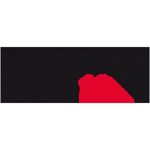 logo-BPI-3