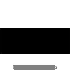 logo-Zingaro